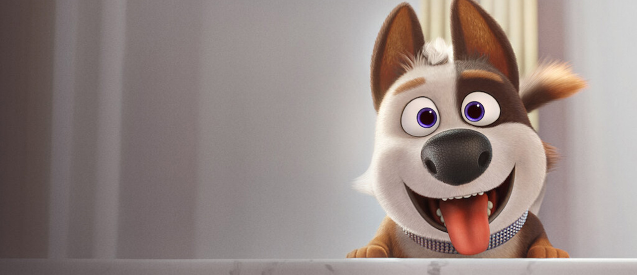 dog gone trouble banner